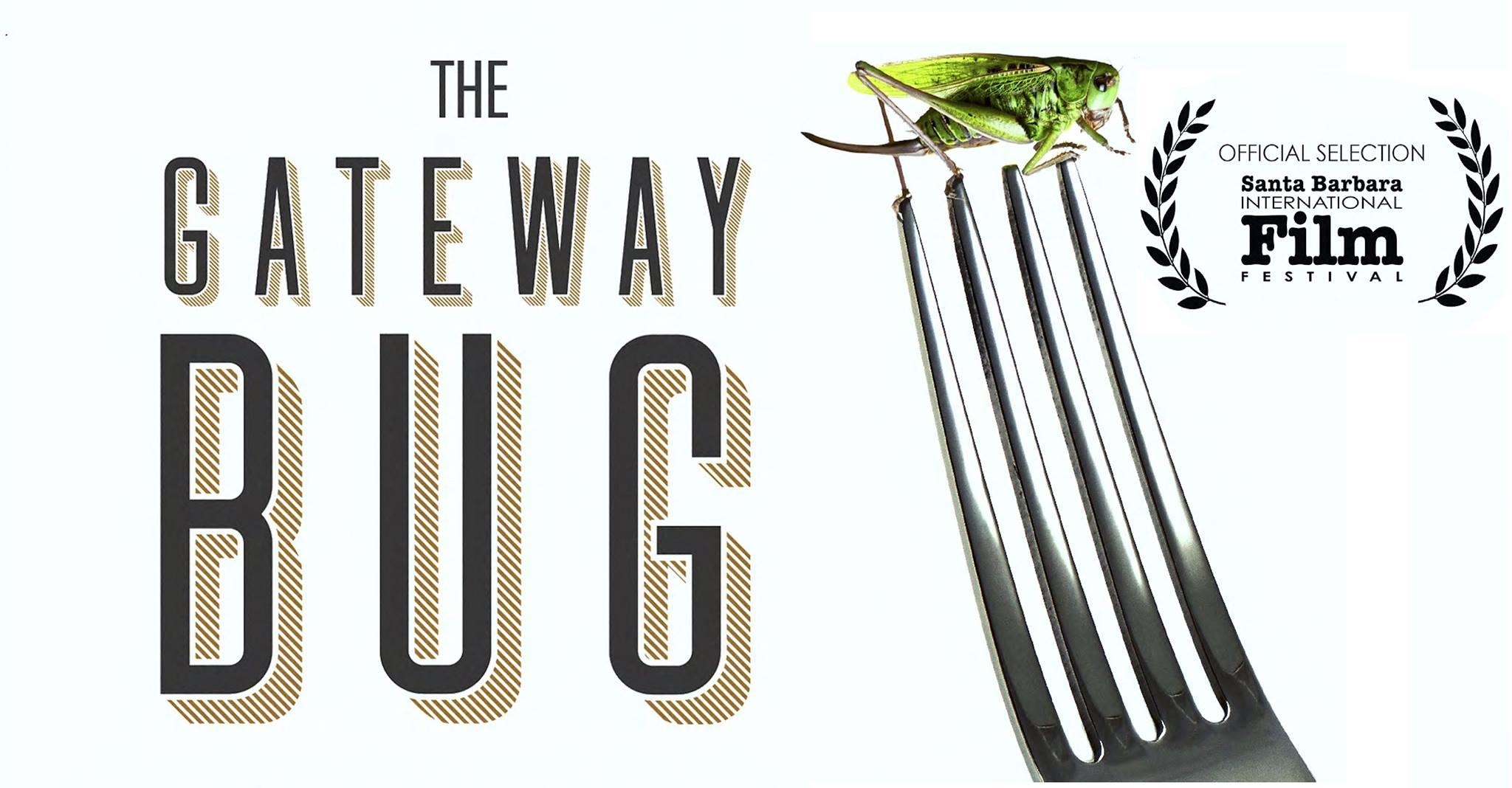 The Gateway Bug Film Screening Loop