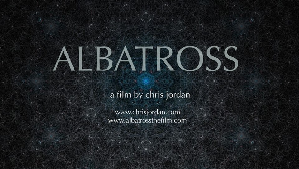 albatross sea shepherd at LOOP