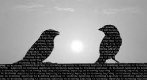 aspiring to birdsong