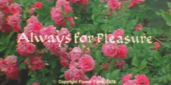 Always for Pleasure (1978) - Free film screening
