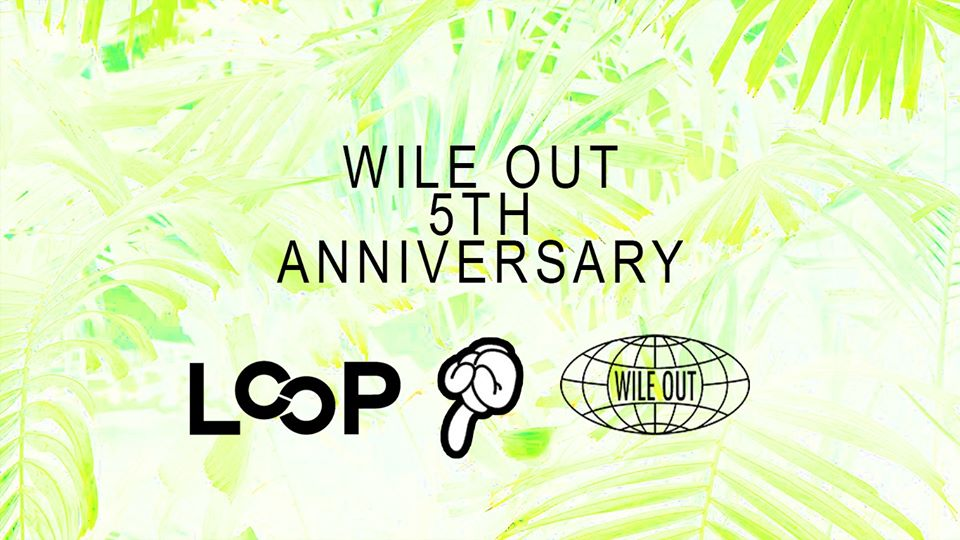 wile out 5th anniversary loop